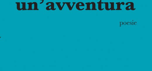 la vita è un'avventura brauquier